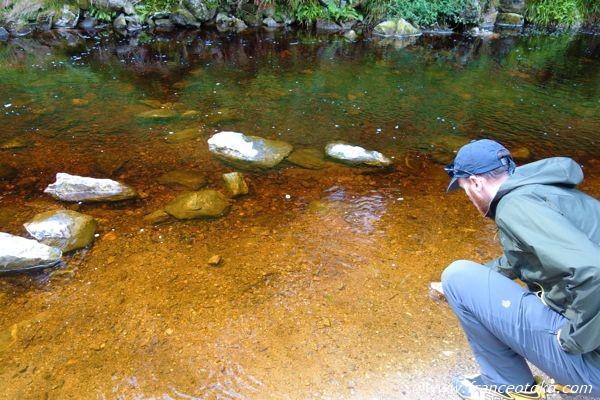 アイルランド 自然 観光
