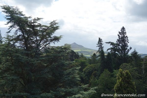アイルランド 自然 山