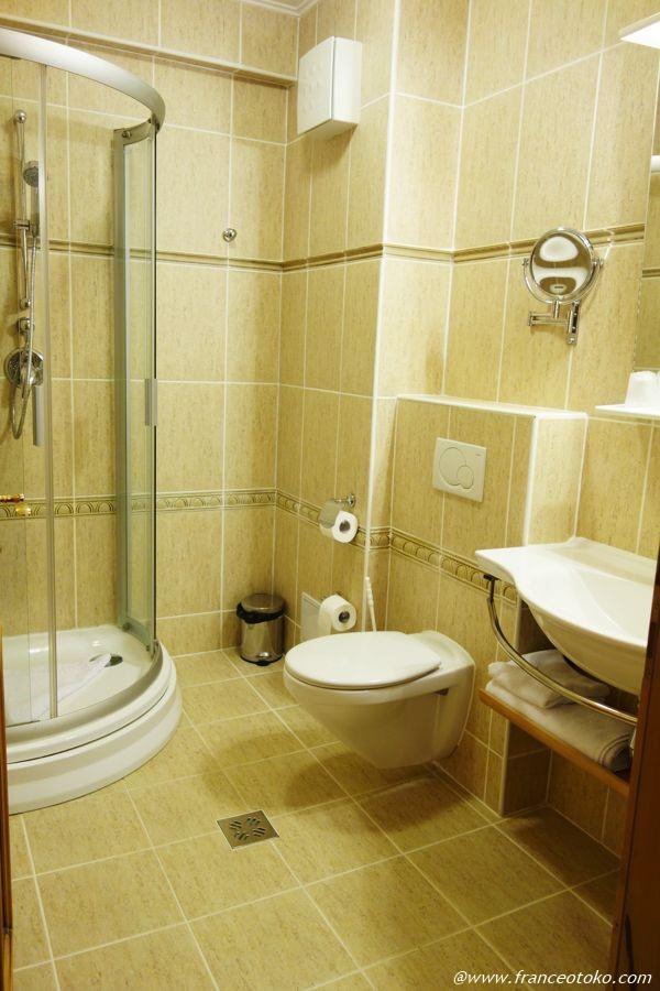 シギショアラ 清潔なホテル
