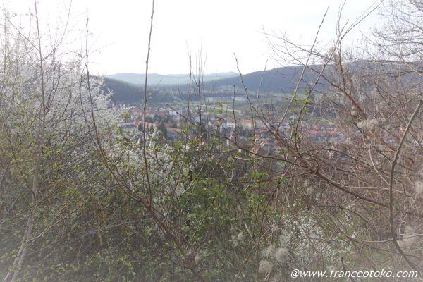 ルーマニアのトランシルヴァニア地方 シギショアラ