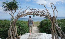 幸福と愛とヤエヤマヤシに包まれる麗しの石垣島