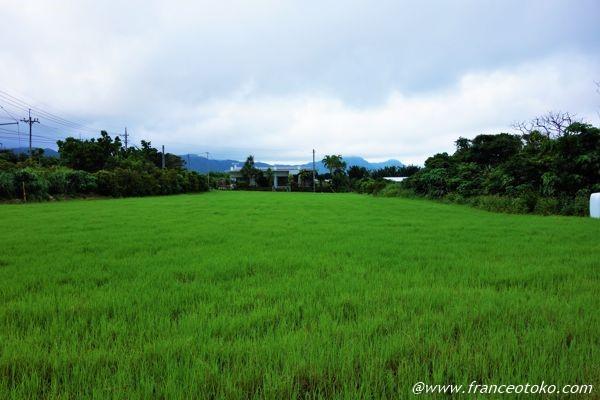 沖縄 原風景