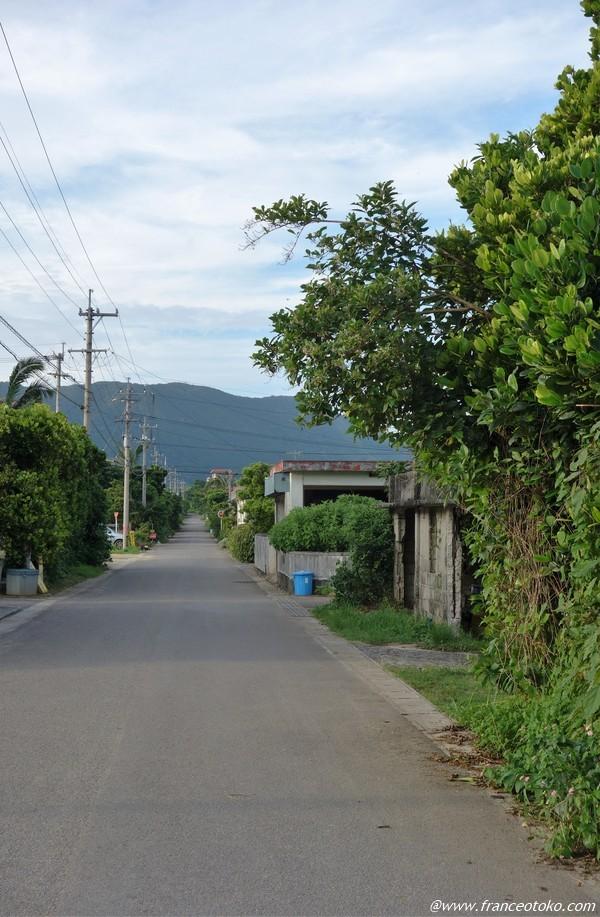 石垣島 風景