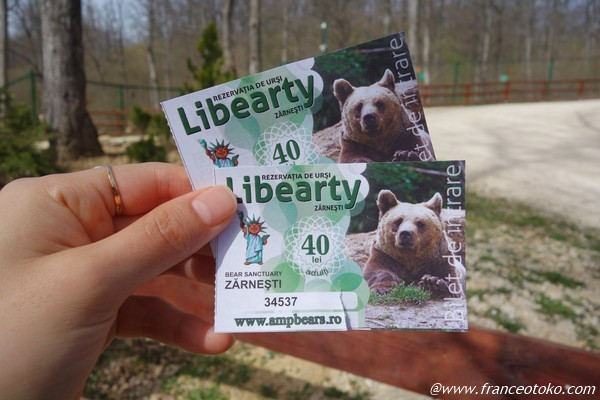 Libearty Bear Sanctuary | The Bear Sanctuary