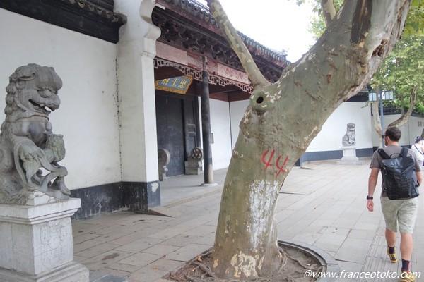 江蘇省東南部 蘇州