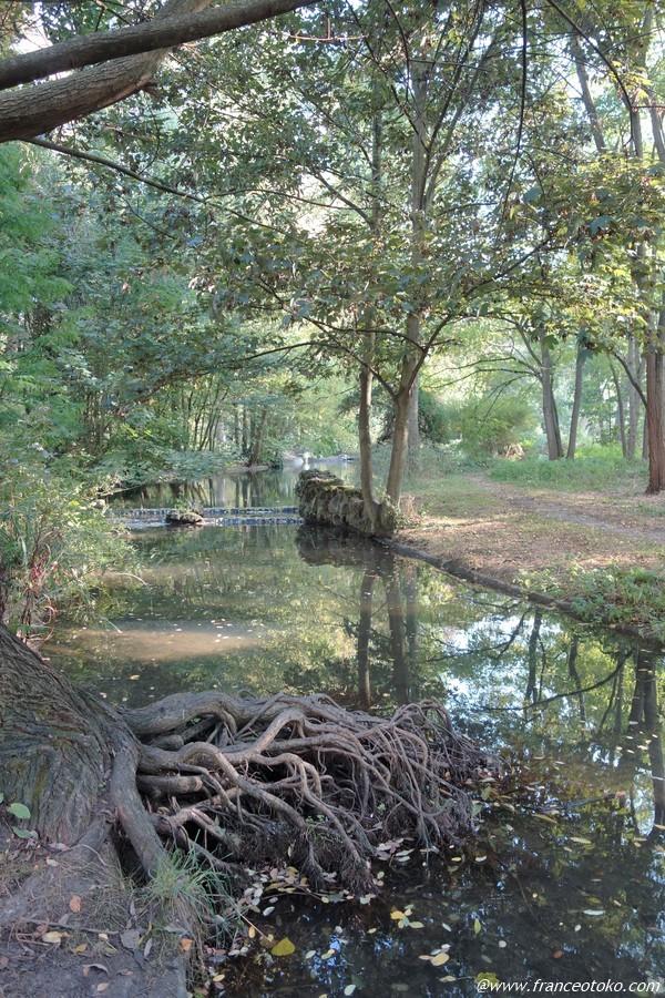 ヴァンセンヌの森