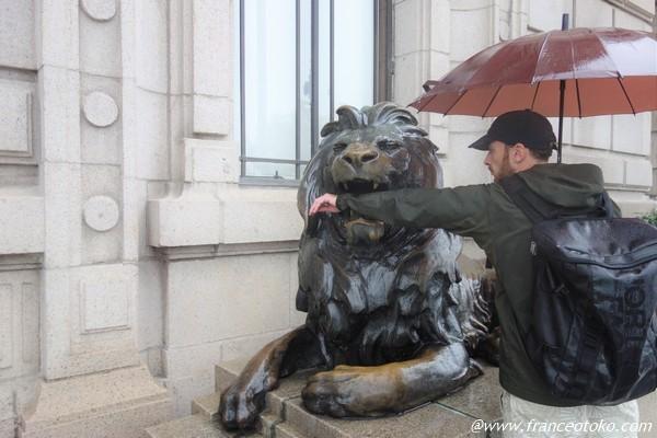 ライオン 噛まれる