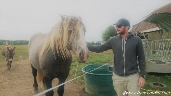 フランス人と馬