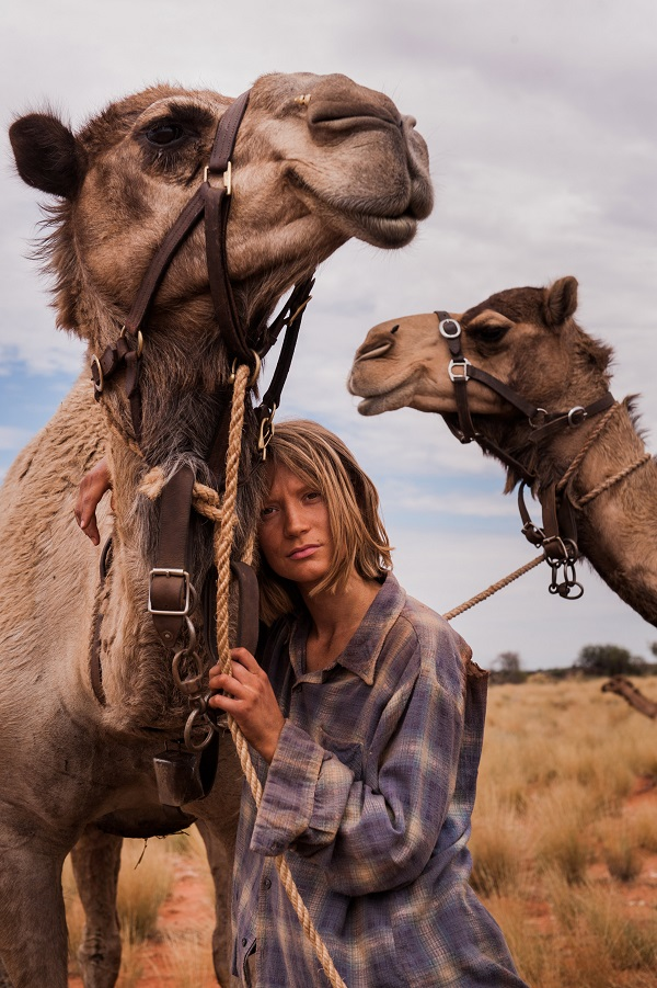 ミアワシコウスカ オーストラリア 砂漠