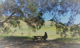 Malibu Creek State Park ロサンゼルス映画なハイキング