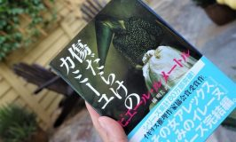 「傷だらけのカミーユ」がナミビア旅読書に最適!