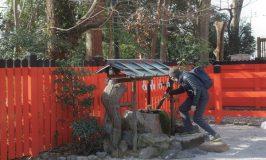 ぶらり京都下鴨・糺の森とデヴィッド・キッドの北京物語