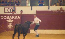 スペイン闘牛 イケメンが飛び越えて牛を傷つけないバージョン
