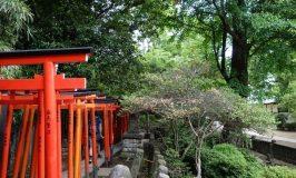 果てしない根津神社に千と千尋なノスタルジー